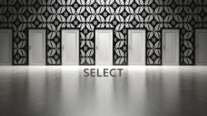 選択の画像